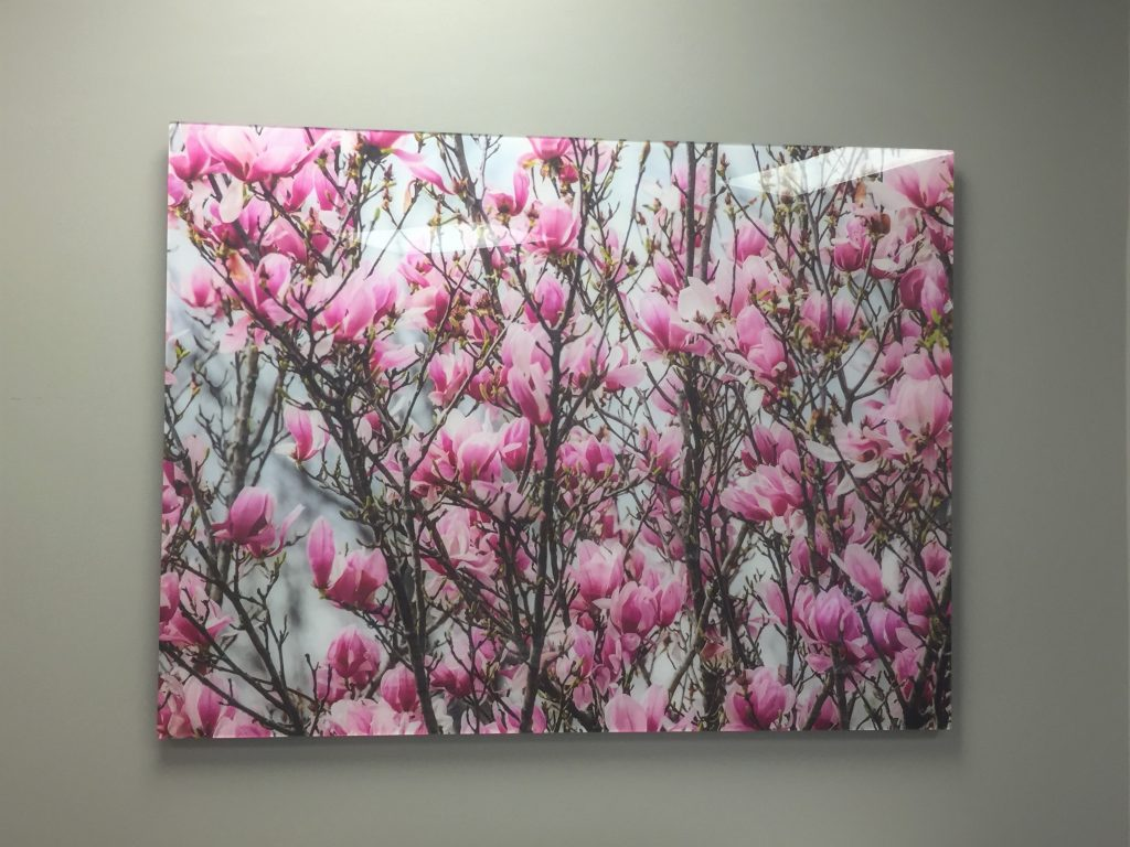 Photo-mounted  acrylic print with modern aluminum back frame